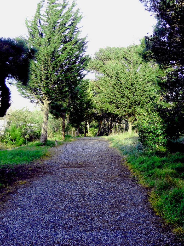 cool path