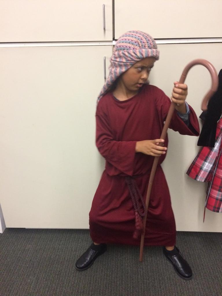ninja-shepherd